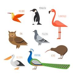 set of Colorful bird icons Owl hummingbird pigeon vector image