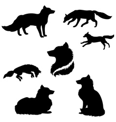 FoxSet vector image vector image