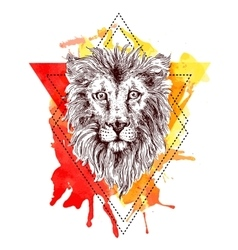 Sketch lion vector