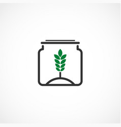 plant in the jar vector image