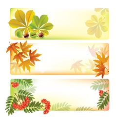 Horizontal autumn banners vector