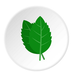Fresh green basil leaves icon circle vector