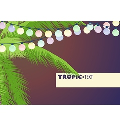 Leaves of palm trees vector