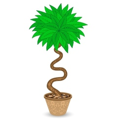 Bent tree in flowerpot vector