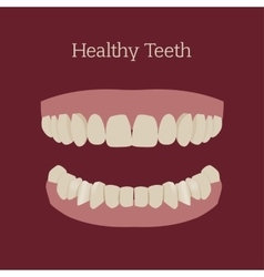 Healthy teeth image vector image