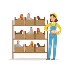 Farmer woman caring for chickens poultry breeding vector
