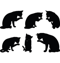 Image - cat silhouette in cleaning paw pose vector