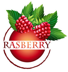 Label design with word raspberry vector