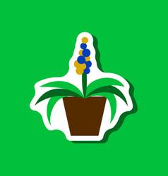 Paper sticker on stylish background hyacinth vector