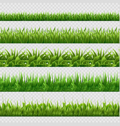 realistic green grass seamless backgrounds vector image