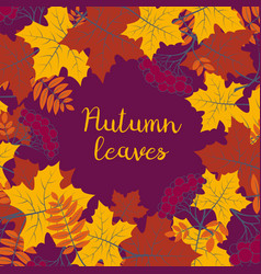 autumn floral background with colorful vector image