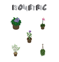 isometric houseplant set of flower flowerpot vector image vector image