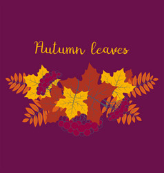 autumn background colorful floral frame with vector image vector image
