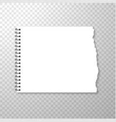 torn piece of squared paper from spiral bound vector image