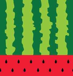 Watermelon color fruit background vector