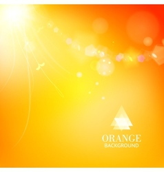 Bright orange background with a branch and leaves vector image vector image
