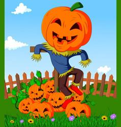 Cartoon scarecrow and pumpkins vector
