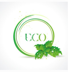 Eco symbol with green leaves icon vector