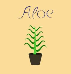 Flat stylish background plant aloe vector