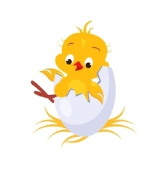 Cartoon chicken in an egg vector