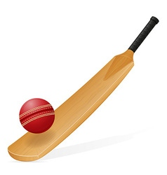 cricket bat and ball 01 vector image vector image