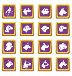 Dog icons set purple vector