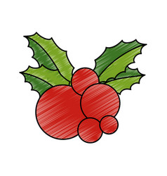 leafs with berry christmas decoration icon vector image
