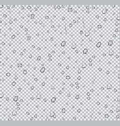 realistic water drops on transparent background vector image vector image