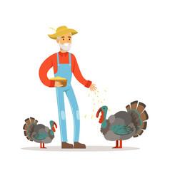 Old farmer man feeding turkeys poultry breeding vector