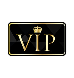 Golden vip pass vector