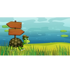 A turtle near the wooden arrow boards vector image