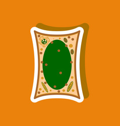 Plant cell paper sticker on stylish background vector