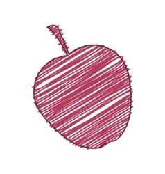apple fruit food vector image