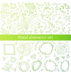 Floral decor elements vector