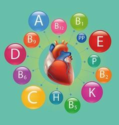 Heart and vitamins vector