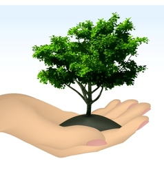 Human hand with tree vector