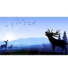 Silhouette of deer and kangaroo standing vector