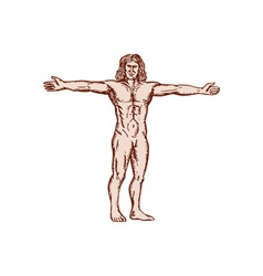Vitruvian man arms spread front etching vector
