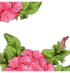 Wildflowers blooming delicate flowers background vector image vector image
