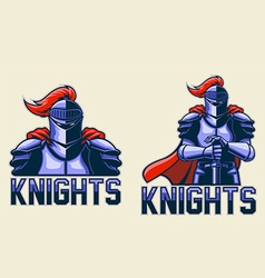 Knights vector image