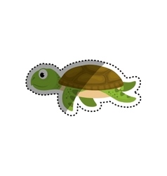 Marune turtle animal vector image