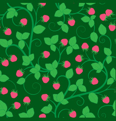 seamless pattern with raspberry vector image vector image