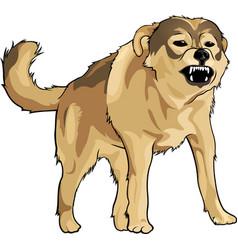 Wild crazy dog vector