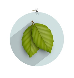 Leaf icon with long shadow vector