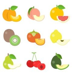 Fruit icons set 3 vector image vector image