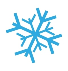 Snowflake decoration christmas icon vector