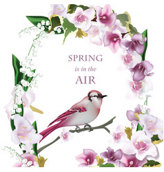 spring bird on blossom cherry tree branch vector image