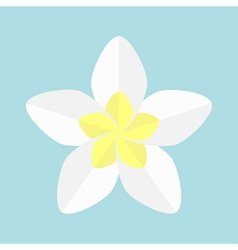 Plumeria tropical flower icon frangipani hawaii vector