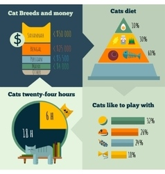 flat cats life infographic vector image