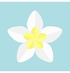 Plumeria tropical flower icon frangipani hawaii vector